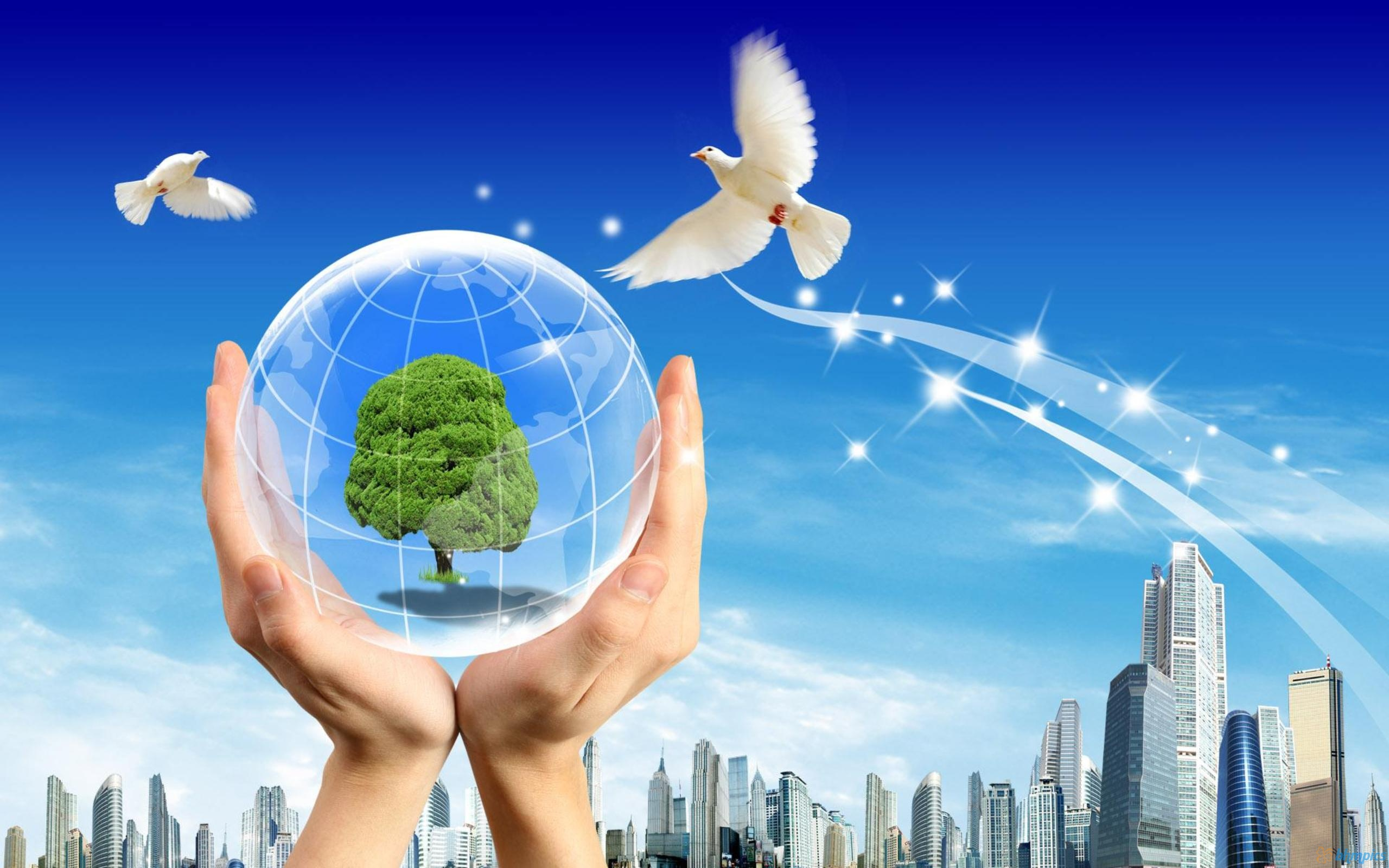 What Are The Advantages Of Choosing Green Energy?