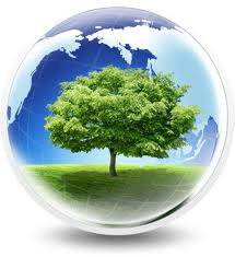 Why Solar Panels Comes To Your Mind Whenever You Think Of Eco Energy?